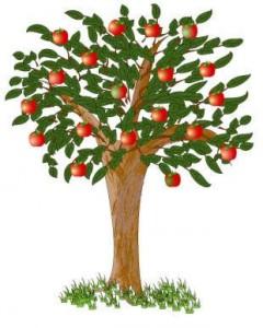 درخت سعادت